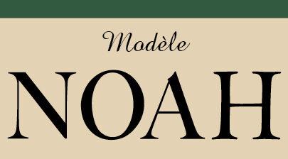 NOAH-CSU0